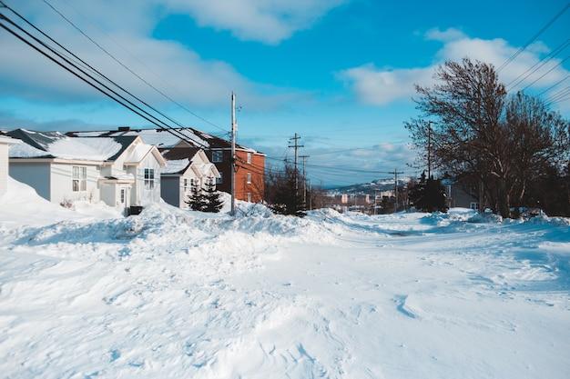 Paisagem de neve com casas Foto gratuita