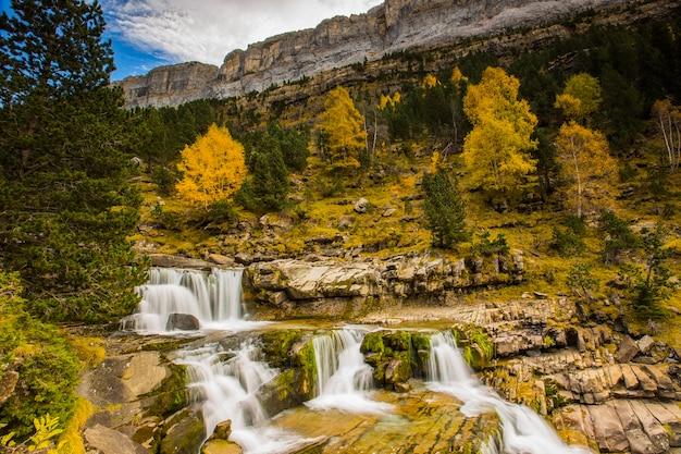 Paisagem de outono com bela floresta e cachoeira Foto Premium