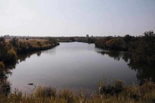 Paisagem de outono com um rio Foto gratuita