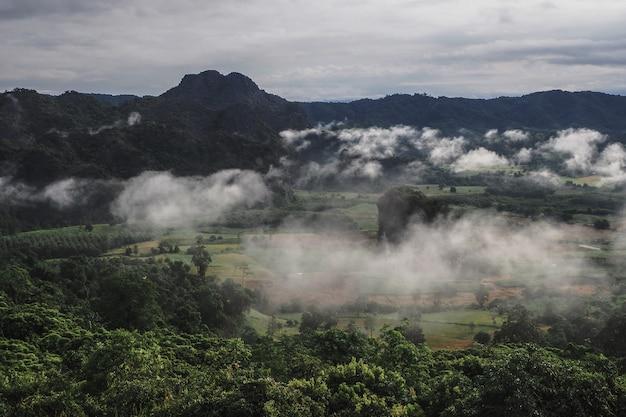 Paisagem do parque da floresta da montanha de phu lanka na província de phayao tailândia Foto Premium