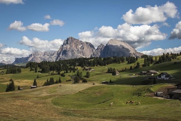 Paisagem do rochoso seiser alm e ampla pastagem em compatsch, itália Foto gratuita