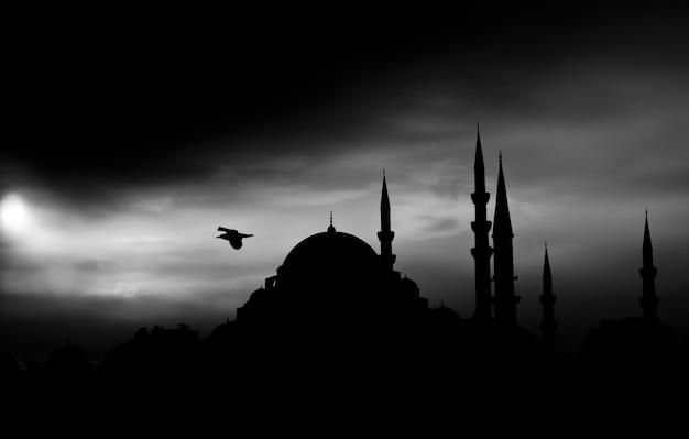 Paisagem escura com vôo do pássaro Foto gratuita