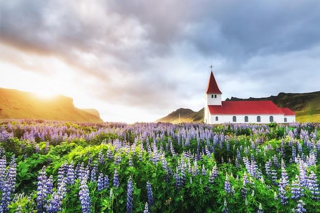 Paisagem natural do campo de lavanda e uma igreja Foto Premium