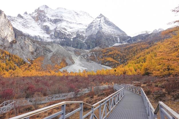 Paisagem vista no outono na reserva nacional de yading, condado de daocheng, província de sichuan, china. Foto Premium