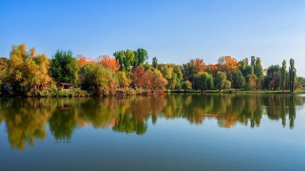 Paisagens de verão brilhante com reflexo das árvores no lago à luz do sol. Foto Premium