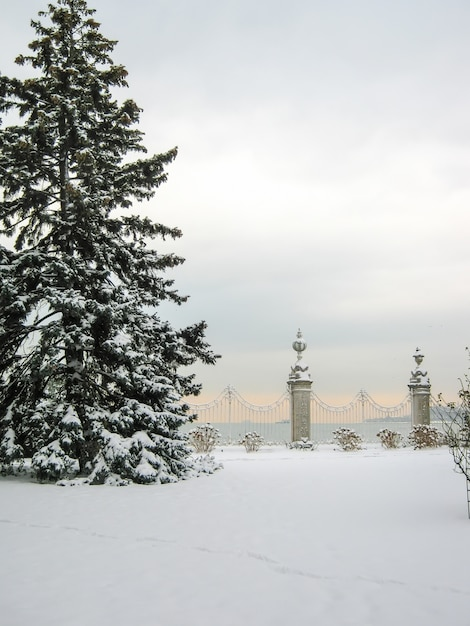 Palácio pitoresco enorme de dolmabahce em istambul. peru. Foto Premium
