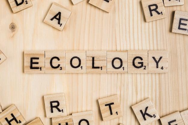 Palavra de ecologia em telhas de madeira Foto gratuita