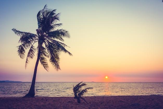 Palmeira na praia Foto gratuita