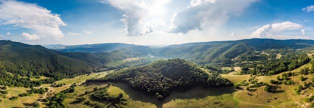 Panorama de floresta de pinheiros verde lindo nas montanhas da romênia com céu azul Foto Premium