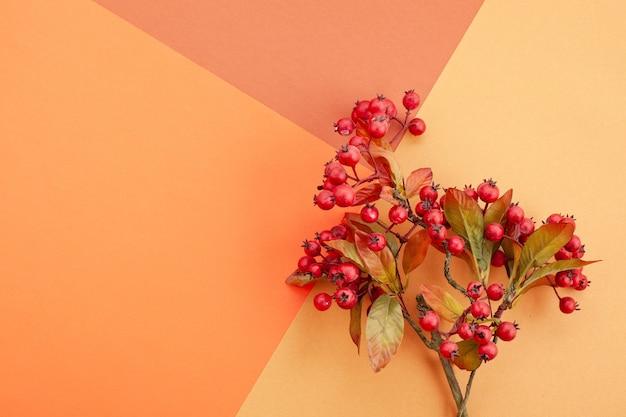 Papel em cores de outono com decoração e espaço de cópia Foto Premium