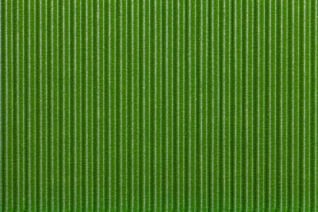 Papel ondulado verde Foto Premium
