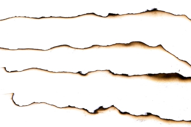 Papel queimado velho grunge abstrato textura Foto Premium