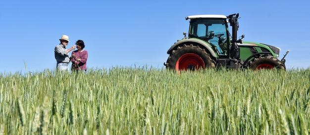 Par, agricultores, trigo, campo, trator Foto Premium