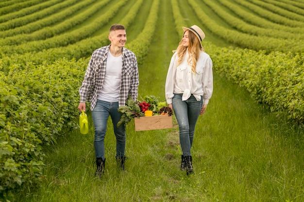 Par, carregar, cesta, com, legumes Foto gratuita