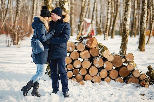 Par, em, um, inverno, parque Foto gratuita