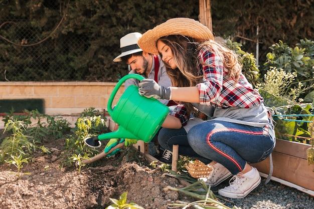 Par, jardinagem, a, plantas, em, a, jardim doméstico Foto gratuita