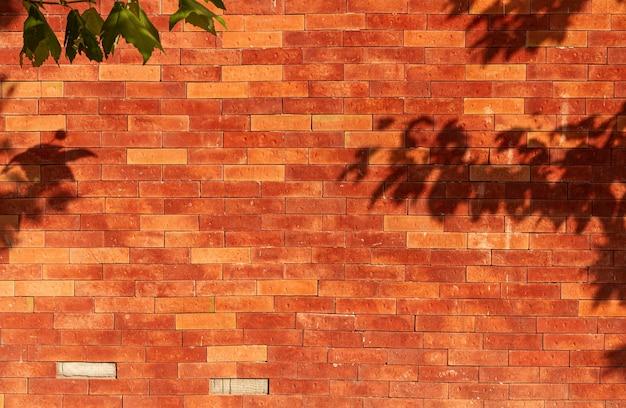 Parede de tijolo velha com sombras de folhas Foto Premium