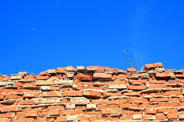 Parede de tijolos destruídos entre ervas Foto Premium