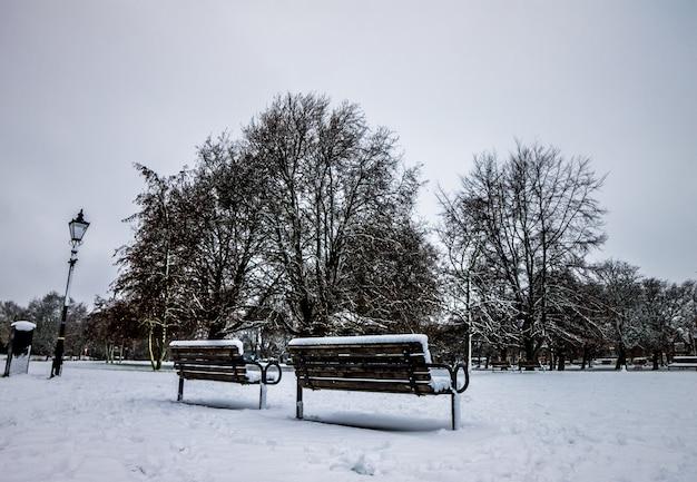 Parque da inglaterra depois de uma nevasca Foto Premium