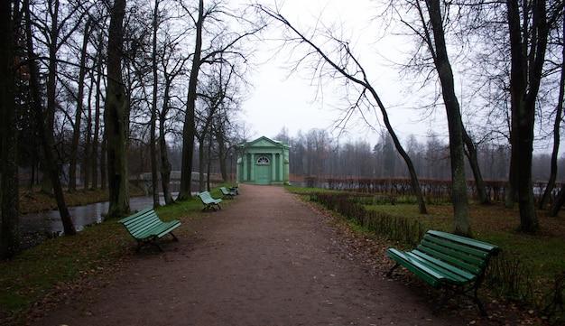Parque de manhã de outono com neblina. parque sombrio. parque enevoado. Foto Premium