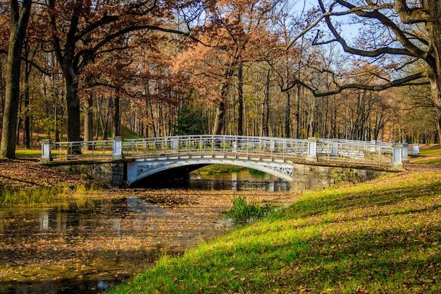 Parque do outono da cidade das pontes. outono dourado. outono no parque. folhagem amarela. Foto Premium