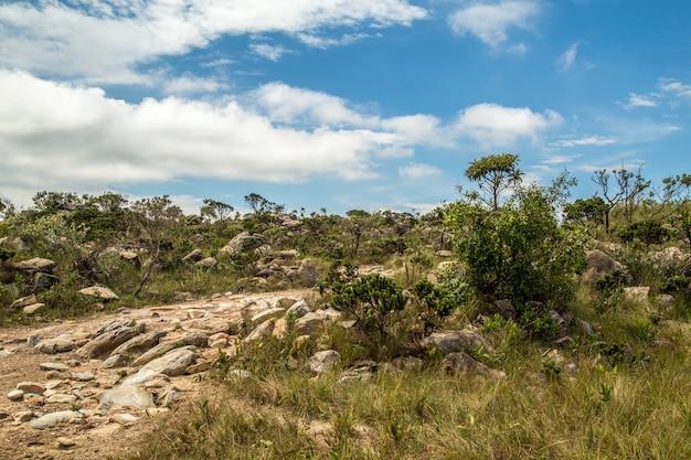 Parque nacional, brasil, serra da canastra Foto Premium