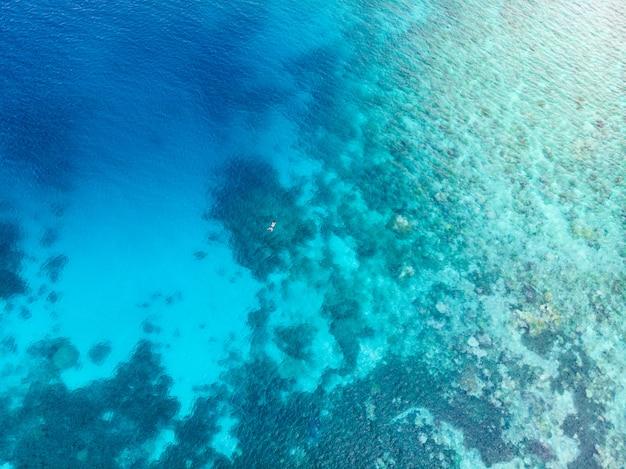 Parte aérea superior abaixo pessoas snorkeling no recife de coral mar do caribe tropical Foto Premium