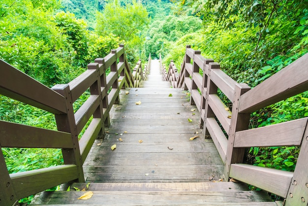 Passarela de madeira no jardim em cheonjeyeon falls, jeju island Foto Premium