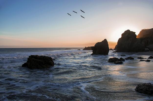 Pássaros voando sobre a costa do oceano durante um pôr do sol de tirar o fôlego Foto gratuita