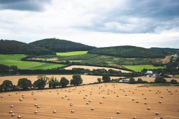 Pastos verdes da zona rural da irlanda com fardos de feno e árvores Foto Premium