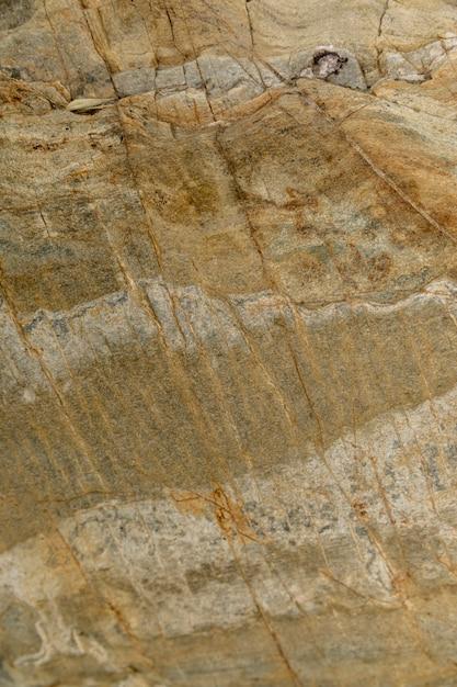 Pedra molhada perto do rio Foto gratuita