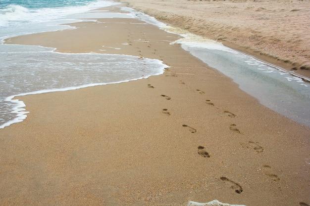 Pegadas na areia junto ao mar Foto Premium