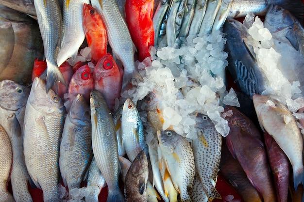 Peixe cru no mercado Foto gratuita