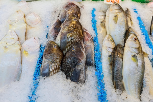 Peixe fresco no gelo decorado para venda no mercado Foto Premium