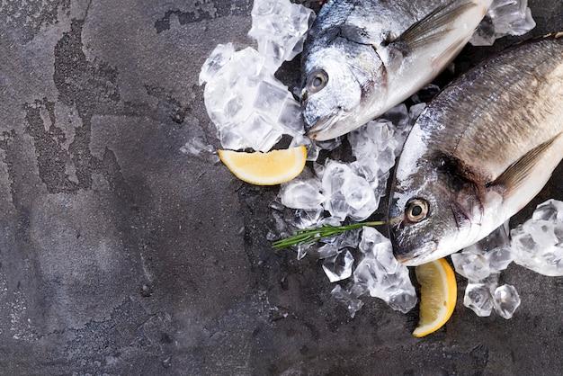Peixe fresco no gelo Foto Premium