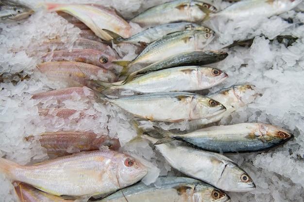 Peixe fresco no mercado Foto Premium