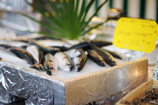 Peixe fresco saudável no mercado de frutos do mar Foto Premium