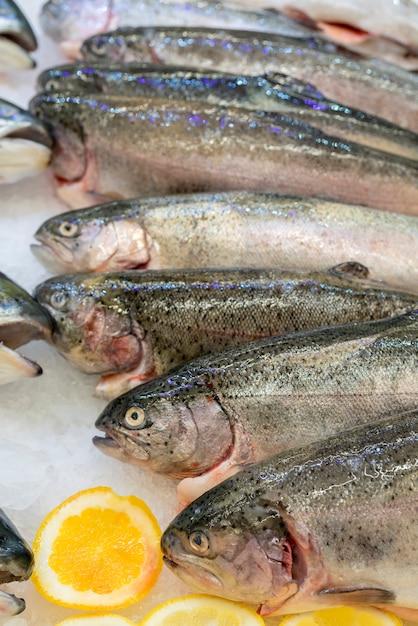Peixes frescos da truta em um contador do gelo em um supermercado. Foto Premium
