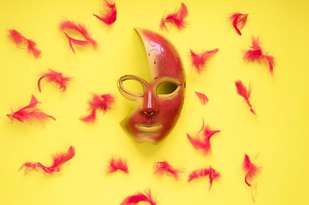Penas em torno de máscara bonita Foto gratuita