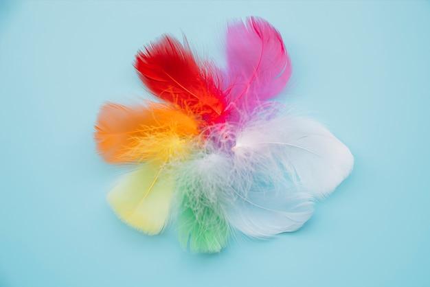 Penas multicoloridas em círculo Foto gratuita