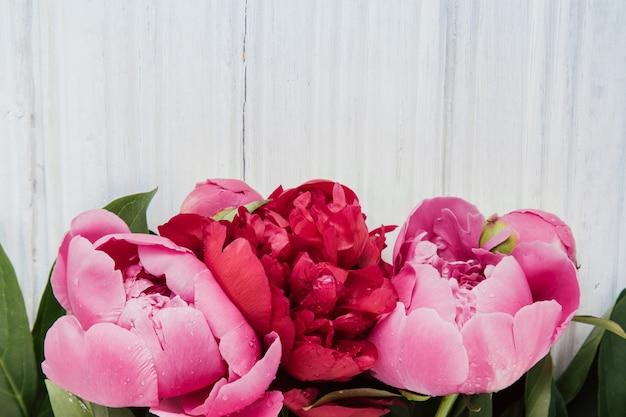 Peônias rosa na mesa de madeira branca com espaço de cópia Foto Premium