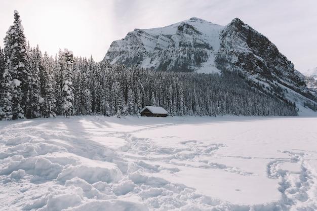 Pequena casa de campo nas montanhas Foto gratuita