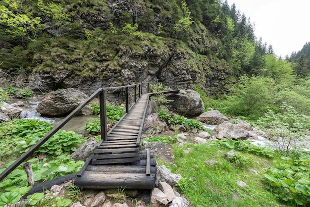Pequena ponte de madeira nas montanhas dos cárpatos Foto Premium