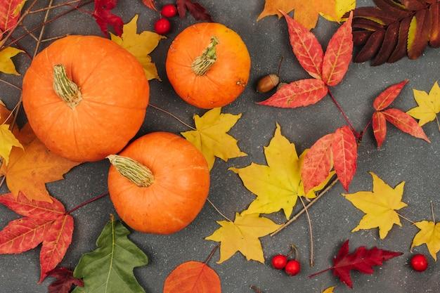 Pequenas abóboras laranja e folhas de bordo de outono em um fundo cinza escuro Foto Premium