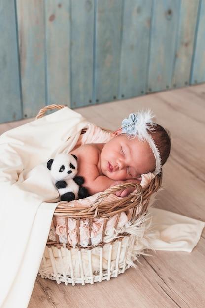 Conhecido Pequeno bebê dormindo com brinquedo na cesta | Baixar fotos gratuitas GK06