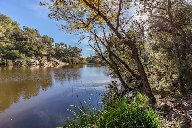 Pequeno lago em terrassa, barcelona Foto Premium