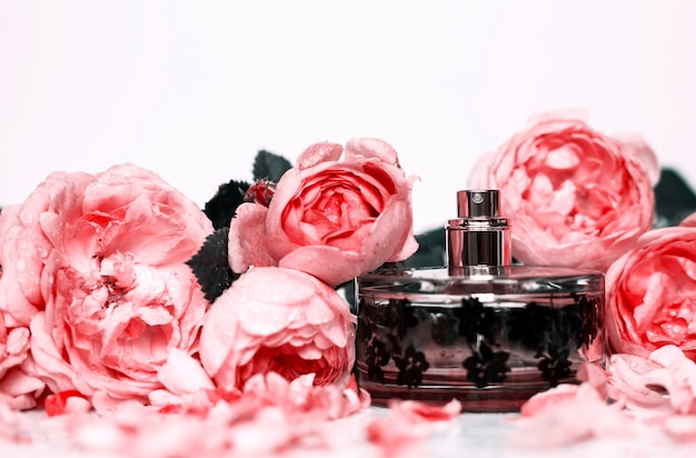 Perfumaria, cosméticos, coleção de fragrâncias Foto Premium