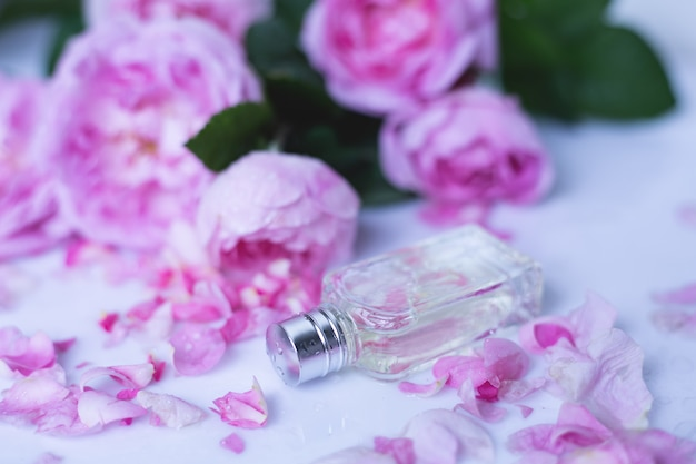 Perfume com flores cor de rosa na superfície da luz Foto Premium
