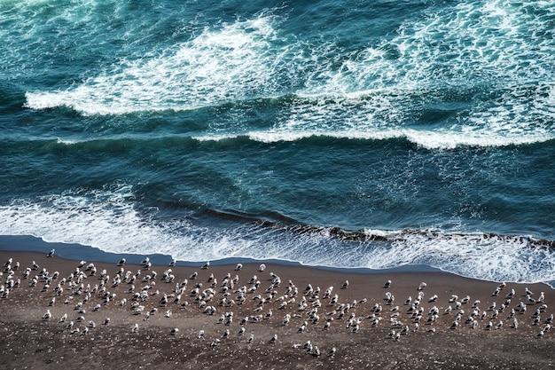 Perigo da onda do mar batendo na costa rochosa com spray e espuma antes da tempestade Foto Premium