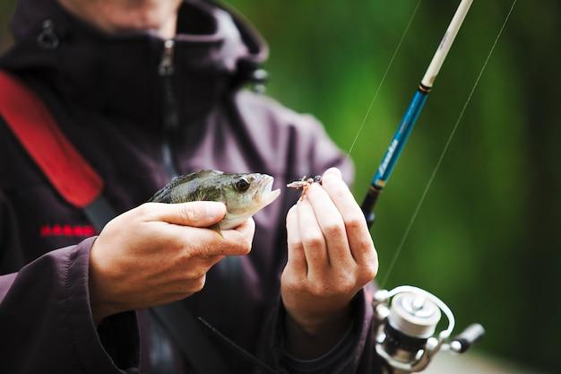 Pescador, removendo, gancho, de, a, peixe, boca Foto gratuita